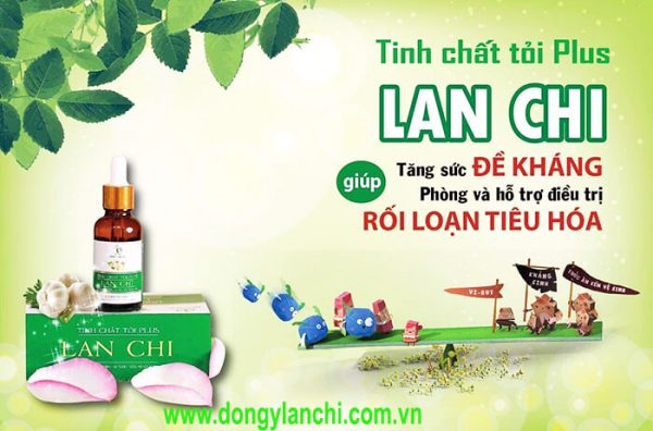 tinh chat toi plus lan chi
