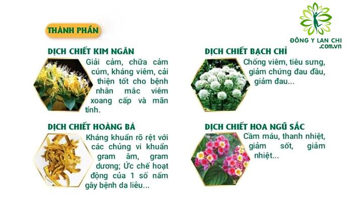 Thành phần Dung Dịch Nhỏ Mũi Đỉnh Xoan Vương Lan Chi